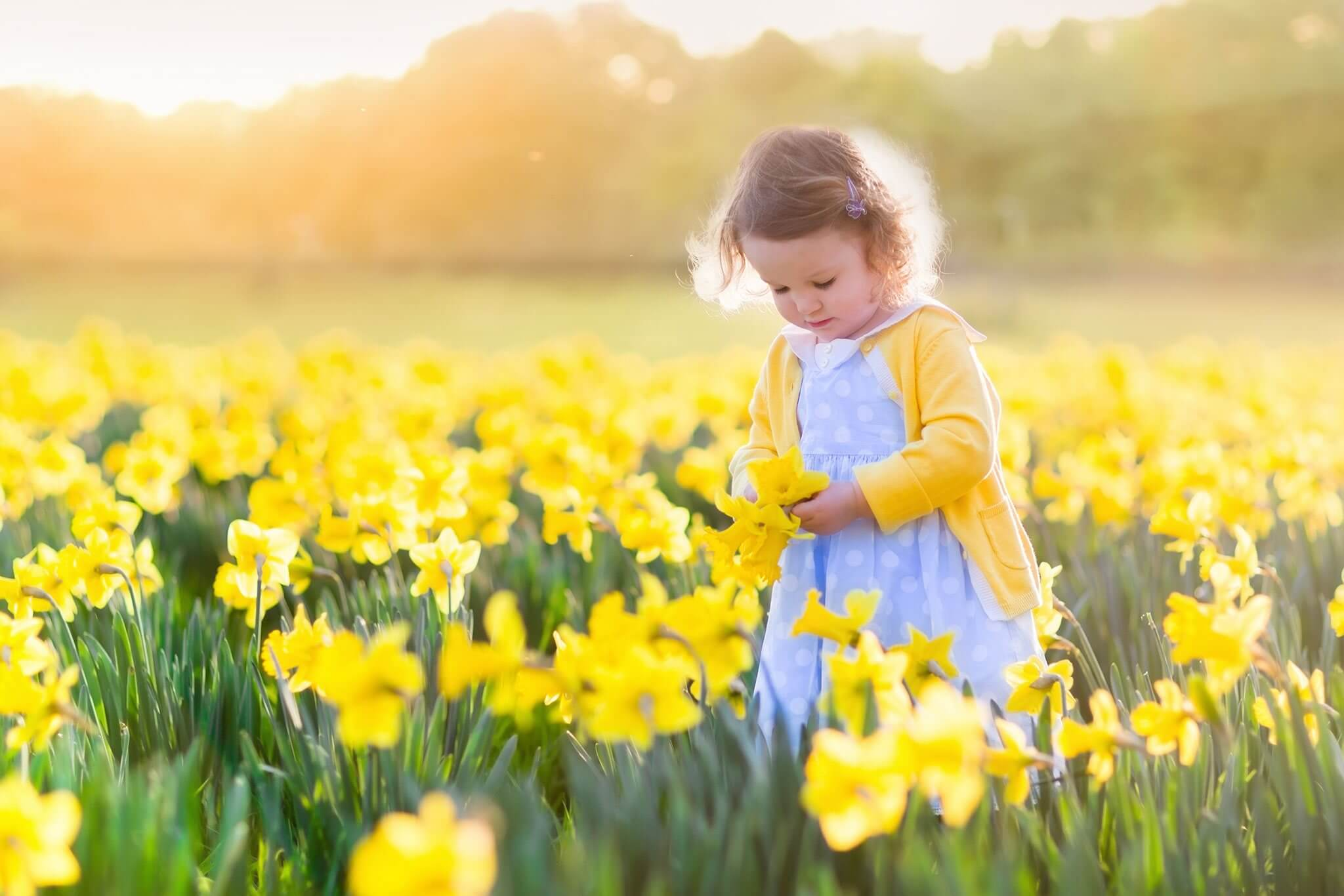 Girl holding yellow flower in field Banner image for Gwinnett Pediatrics and Adolescent Medicine, Gwinnett Pediatricians